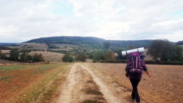 Camille-fields.jpg