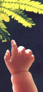 baby-arm.jpg